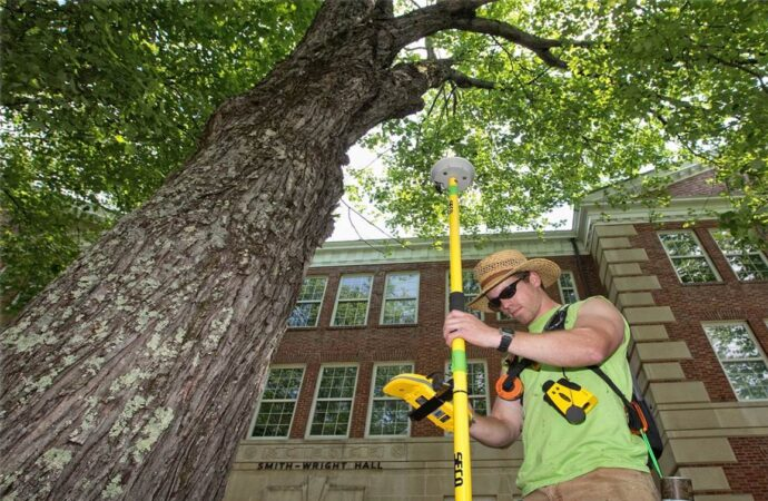 Arborist Consultations-Myrtle Beach Tree Trimming and Tree Removal Services-We Offer Tree Trimming Services, Tree Removal, Tree Pruning, Tree Cutting, Residential and Commercial Tree Trimming Services, Storm Damage, Emergency Tree Removal, Land Clearing, Tree Companies, Tree Care Service, Stump Grinding, and we're the Best Tree Trimming Company Near You Guaranteed!