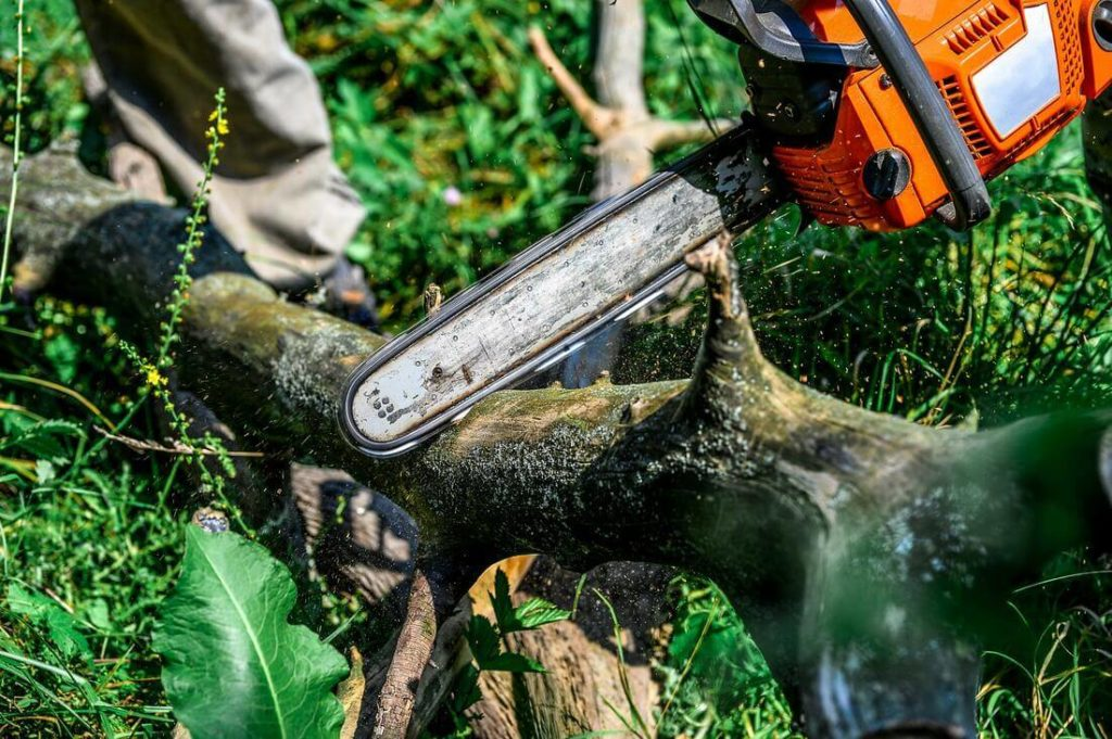 Services-Myrtle Beach Tree Trimming and Tree Removal Services-We Offer Tree Trimming Services, Tree Removal, Tree Pruning, Tree Cutting, Residential and Commercial Tree Trimming Services, Storm Damage, Emergency Tree Removal, Land Clearing, Tree Companies, Tree Care Service, Stump Grinding, and we're the Best Tree Trimming Company Near You Guaranteed!